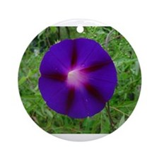 Cute Morning glory Ornament (Round)