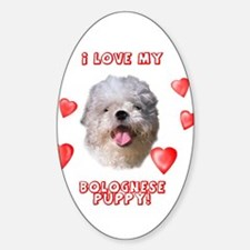 Bolognese puppy love Oval Decal