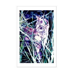 Colorful Cat Posters