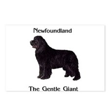 The Gentle Giant Newfoundland Dog Postcards (Packa