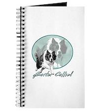 Border Collie Drive Journal