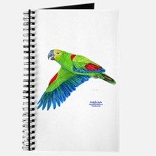 Flying Blue-fronted Amazon Journal