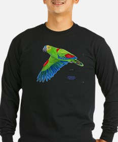 Flying Blue-fronted Amazon T