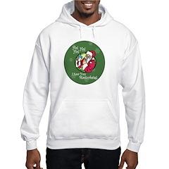 Santa Saw You Masturbate Hoodie