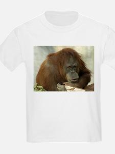 Orangutan 6 Kids T-Shirt
