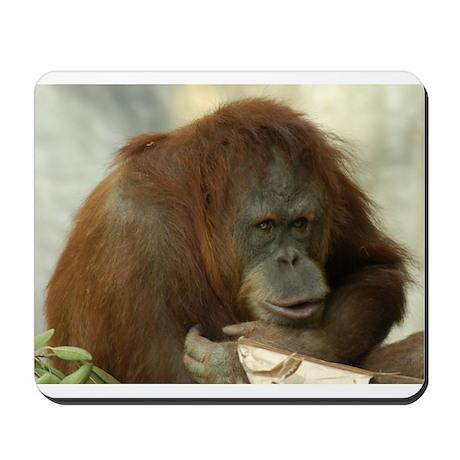 Orangutan 6 Mousepad