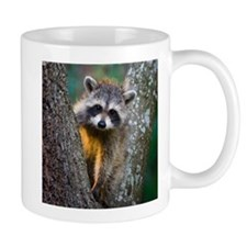 Baby Raccoon Mug
