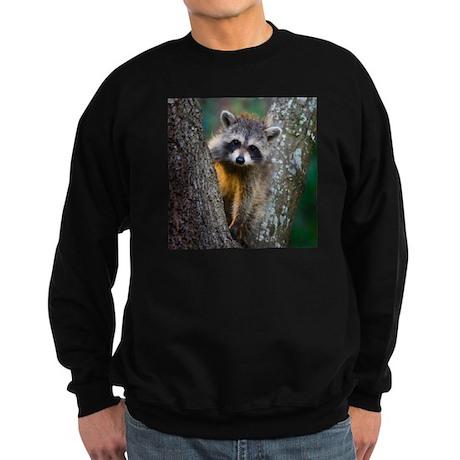Baby Raccoon Sweatshirt (dark)