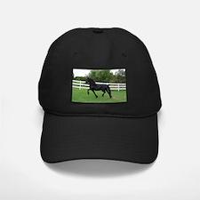 Funny Friesian horse Baseball Hat