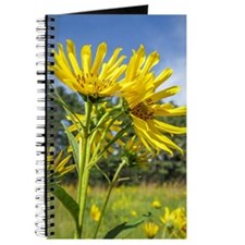 Journal - Featuring Yellow Daisies