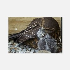 Mother and Baby Morepork Owl Rectangle Magnet