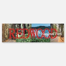 Redwood Americasbesthistory Bumper Bumper Sticker