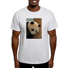 Panda Cub B Ash Grey T-Shirt