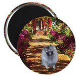The Path - Keeshond (F) Magnet