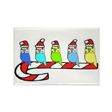 Budgies- Christmas Rectangle Magnet
