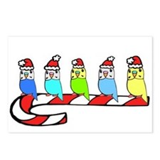 Budgies- Christmas Postcards (Package of 8)