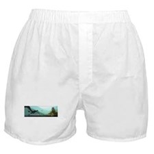 Castle Age Boxer Shorts