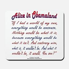 Alice in Obamaland Mousepad