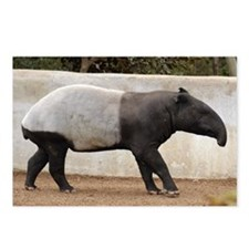Malayan Tapir Postcards (Package of 8)