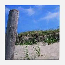 Cape Cod Beach Tile Coaster