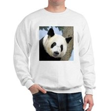 Panda Square Photo Sweatshirt