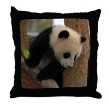 Panda Cub Square Photo Throw Pillow