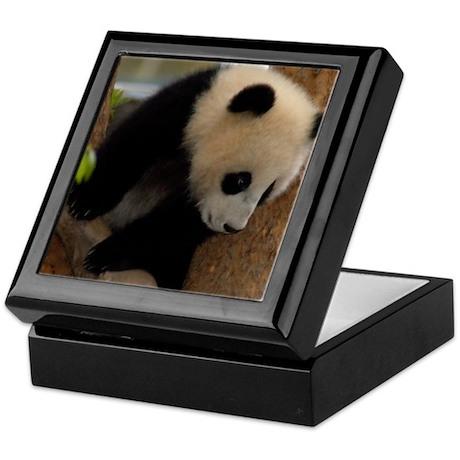 Panda Cub Square Photo Keepsake Box