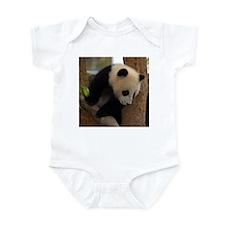 Panda Cub Square Photo Infant Creeper