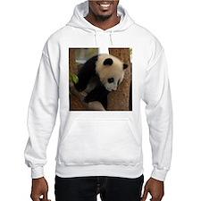 Panda Cub Square Photo Hoodie