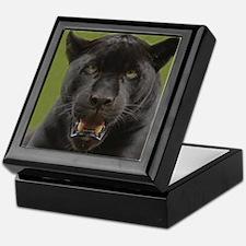 Black Jaguar Square Photo Keepsake Box