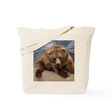 Alaskan Brown Bear Square Pho Tote Bag
