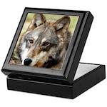 Grey Wolf Square Photo Keepsake Box