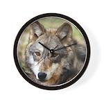 Grey Wolf Square Photo Wall Clock