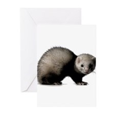 Dark ferret Greeting Cards (Pk of 10)