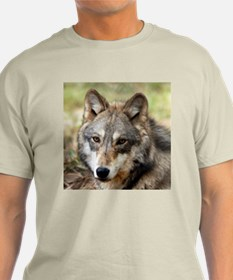 Grey Wolf Square Photo Ash Grey T-Shirt