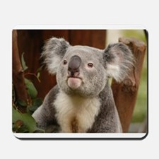 Koala Bear 10 Mousepad