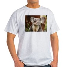 Koala Bear 10 Ash Grey T-Shirt