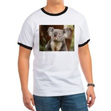 Koala Bear 10 T