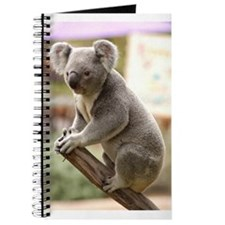 Koala Bear 8 Journal