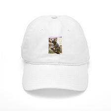 Koala Bear 8 Baseball Cap