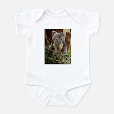 Koala Bear 7 Infant Creeper