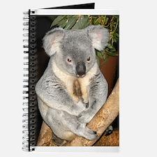 Koala Bear 3 Journal