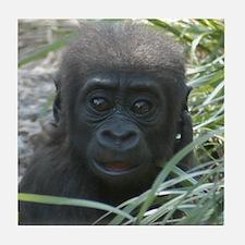 Baby Gorilla Tile Coaster