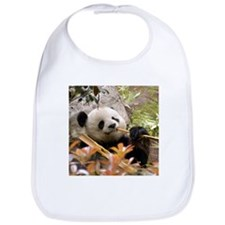 Giant Panda 7 Bib