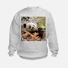 Giant Panda 7 Sweatshirt
