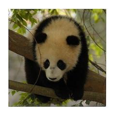 Panda Baby Tile Coaster