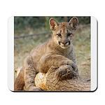 Cougar Cub 4 Mousepad