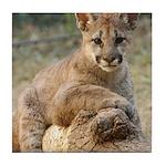 Cougar Cub 4 Tile Coaster