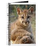 Cougar Cub 4 Journal
