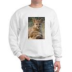 Cougar Cub 4 Sweatshirt